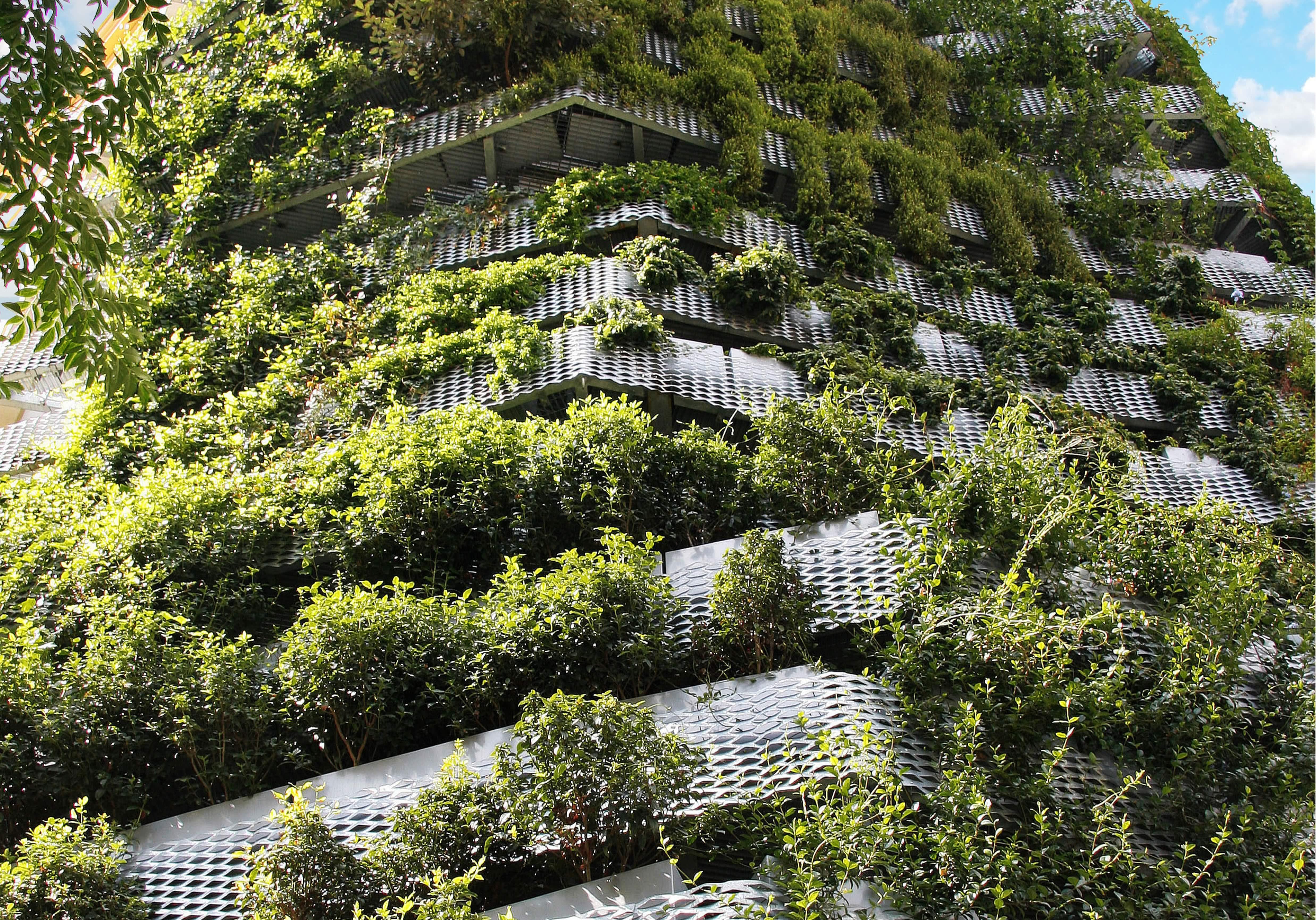 accesibles a travs de una escalera interior dedicados a contener jardineras con plantas que recubran la fachada a modo de un jardn vertical